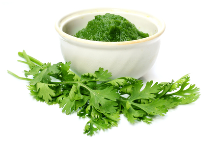 Fresh coriander over white background