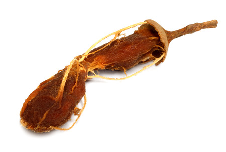 Ripe tamarind isolated on the white background Imagens