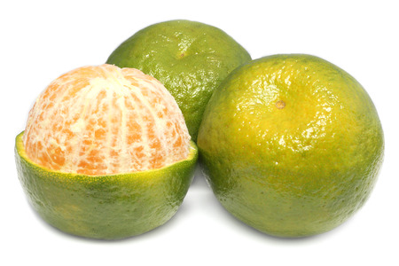 Fresh green orange fruits have medicine properties Imagens