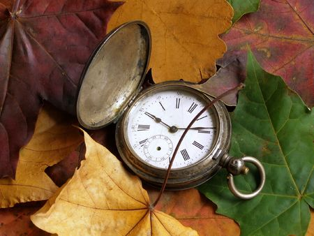 varicoloured: a pocket silver clock is in varicoloured abscissed maple and oak  leaves Stock Photo
