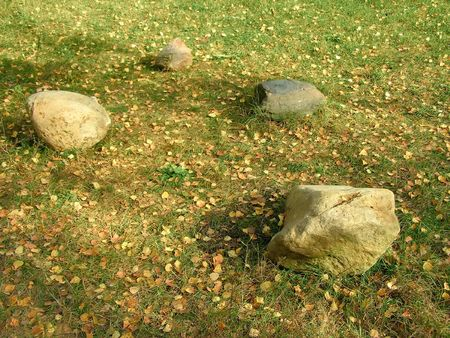 grassy plot: cuatro piedras en el bosque de la parcela de hierba