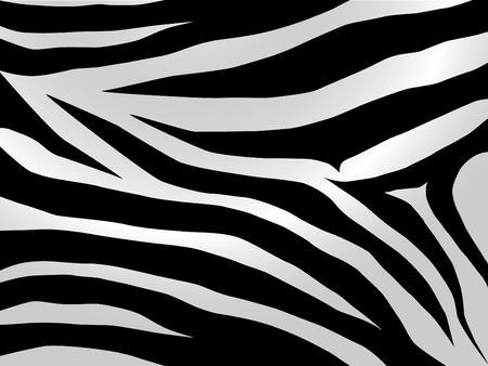 Black and white stripped zebra design Vector