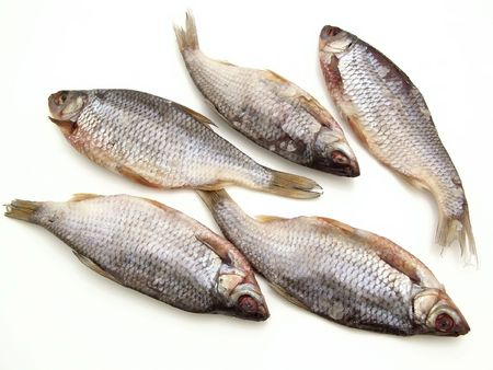 fishman: Five dry fishes on the white background