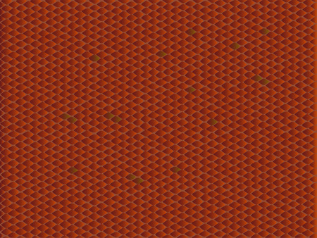 com escamas: Illustration in the vipe snake skin style