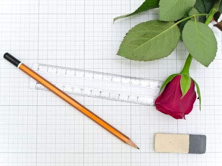 the plotting: Pencil, rose, ruler and eraser at the plotting paper