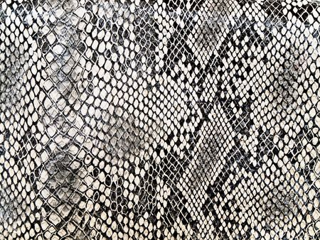 reptilian: black and white background in snake pattern style Stock Photo