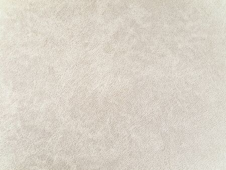 lite: photo of the lite beige leather background