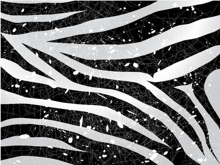scrapped vector zebra background in black and white photo