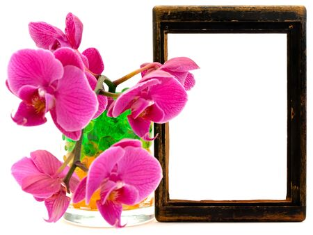 pink orchid flower in glass with hydrogel near the vintage wooden frame photo