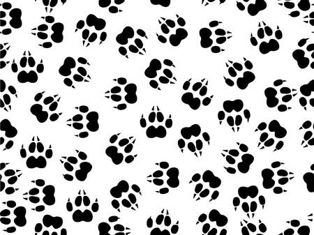 bobcat: perfecta ilustraci�n de las l�minas m�s salvaje de color blanco