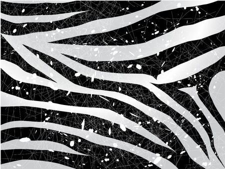 scrapped vector zebra background in black and white Vector
