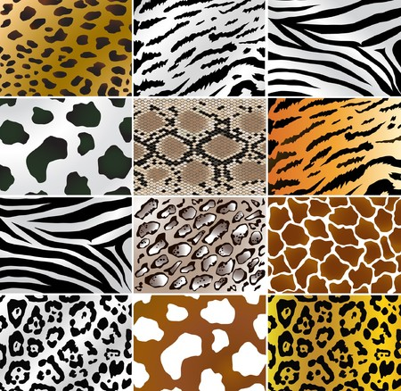 fleecy: Illustation of different animals and snakes skins Stock Photo