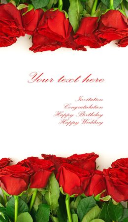 red roses: template for the invitation cards with red roses