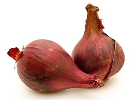 photo of red onion over the white background photo