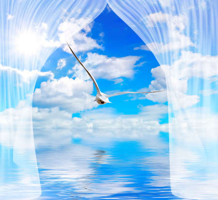 blue cloudy sky with sun and seagull through curtain Stock Photo - 5995736
