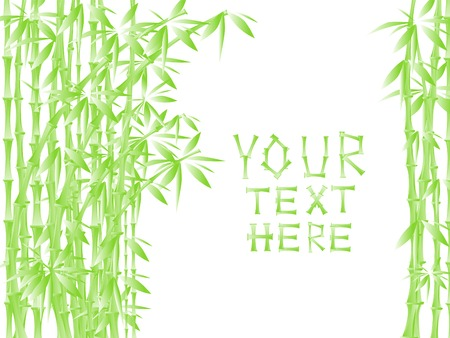 Illustration of green bamboo against white with copy space for your text Vector