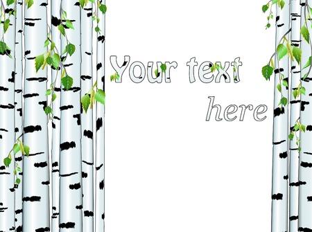 Ilustración de la trama de tronco de abedul con copyspace para el texto en blanco