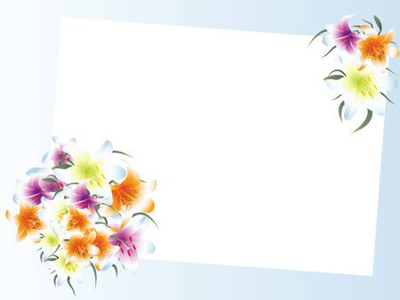 lilium: Illustration of white template with multicolored lily bouquet against blue