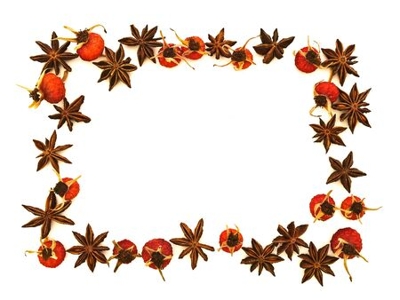 natural border with anise and dryed red rose hips against white. Copyspace for your text Stock Photo - 6550536