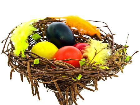 easter spring nest with multicolored eggs against white background Stock Photo - 6550533