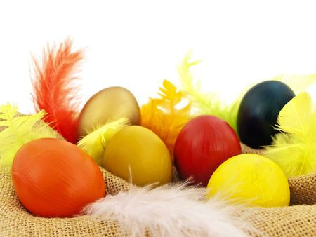 easter composition with multicolored eggs and feathers at brown sacking against white photo