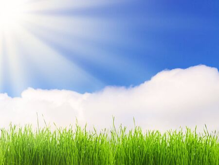 bright sun over the green grass and blue sky photo