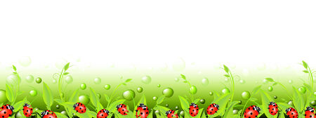 ladyfly: vital spark scenery banner with green flora and red ladybirds. Copyspace for your text