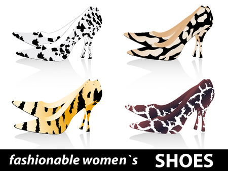 mode: Set of four pairs fashionable women`s shoes