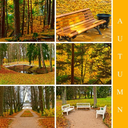 set from six different images in autumn style Stock Photo - 6872645