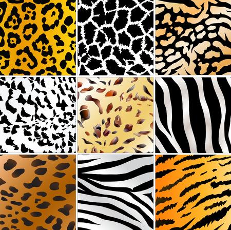 giraffe skin: Set of nine different wild animals skin patterns