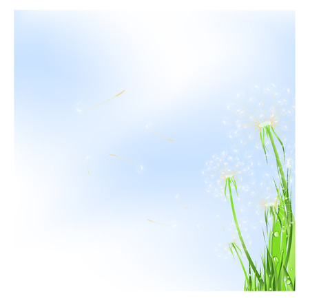 dispersal: meadow with dandelions and blue sky, copyspace for your text