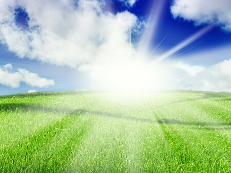 summer green meadow over sunlight and blue cloudy sky photo