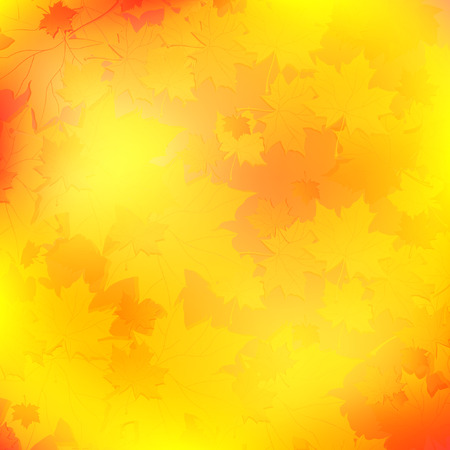 maple leaves autumn background in orange and yellow Vector