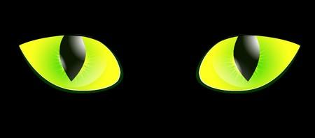 ojo de gato: ojo de gato