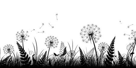 grasslands: field in black and white Illustration