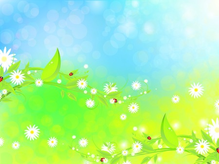bright summertime illustration with  camomiles, green leaves and ladybirds Vector