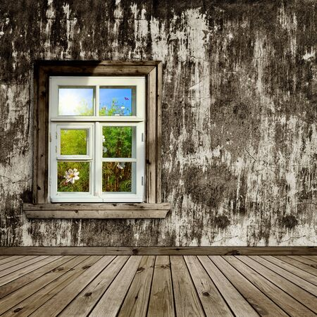 abandoned room with a window overlook the garden Stock Photo - 8222813