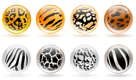 set of different glossy balls with wild animals skin patterns