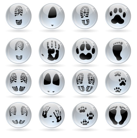 shoeprint: set of different glossy balls with human and animal prints