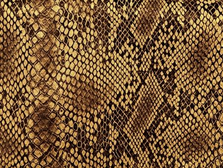Natter: Snake Skin mit dem Muster-Raute-Stil  Lizenzfreie Bilder