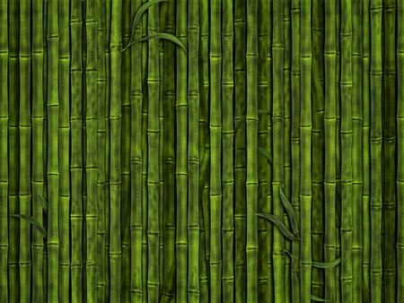 illustration of the green bamboo forest background