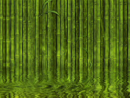 Background of green bamboo forest in the water  photo