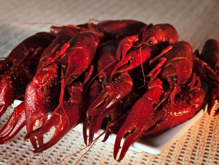 plate full of red boiled crawfishes photo