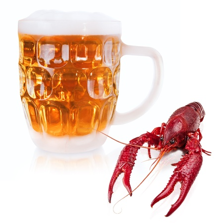 red boiled crawfish and mug of beer over the white photo