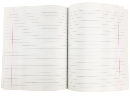 margins: exercise book with red margins over the white background
