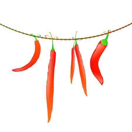 red hot peppers at rope over white background Vector