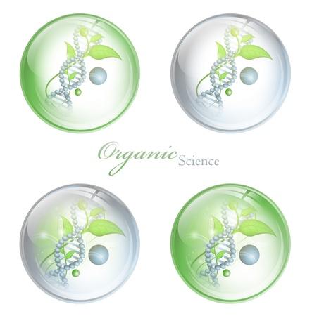 gene: Biologische wetenschap glanzende ballen met DNA en groene bladeren op witte achtergrond