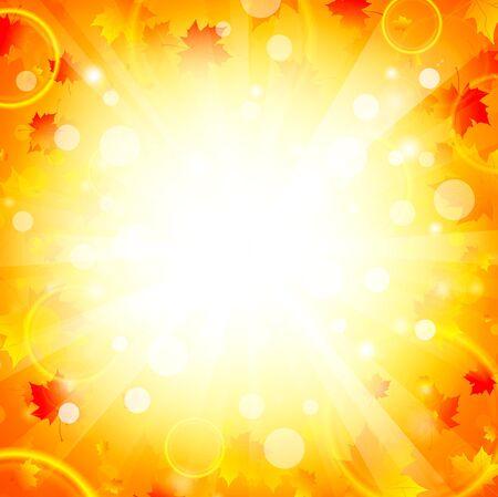 hojas de maple: Arce oto�o deja fondo brillante explosi�n, copyspace