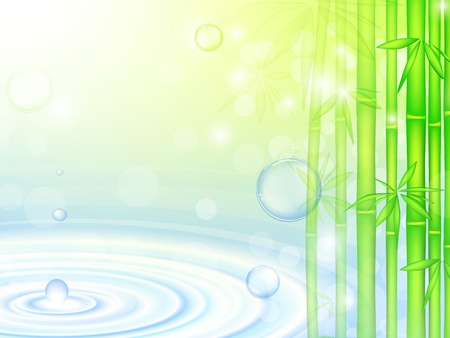 water over green bamboo forest with bubbles  Vector
