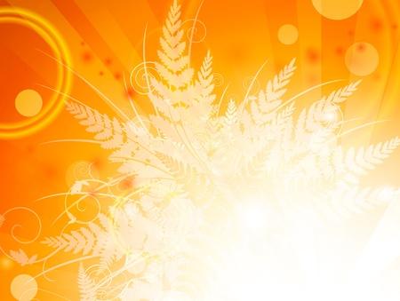 Autumn fern leaves bright orange background